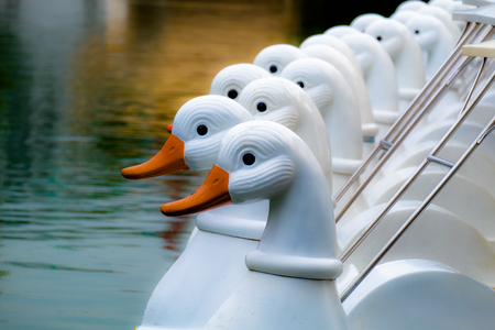 A group of white duck pedal boats is parked on the lake. waiting for the user on a bright morning in the public park. Фото со стока