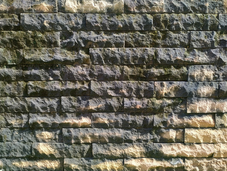 Slate tile wall pattern is filled with moss from rain with sun light effect.
