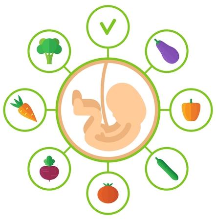 pareja comiendo: Los productos que son útiles para las mujeres embarazadas. ilustración vectorial de dibujos animados plana. Los objetos aislados sobre un fondo.