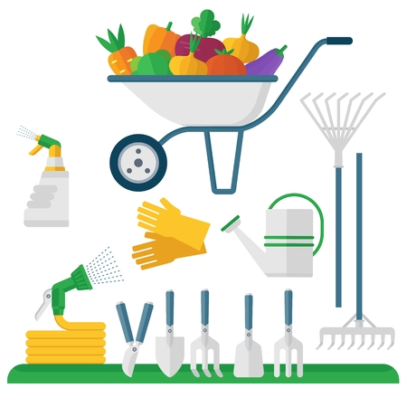weeder: Wheelbarrow and garden equipment, fresh vegetables. Objects isolated on background. Flat and cartoon vector illustration.