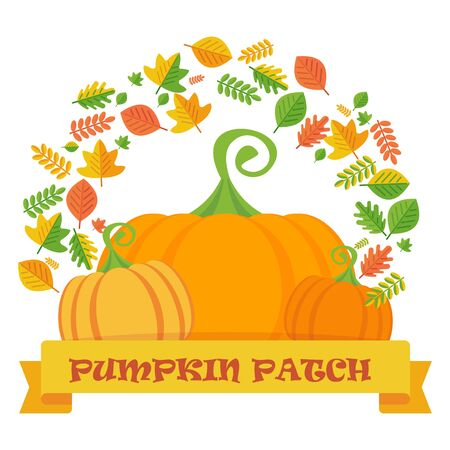 pumpkin patch: Vector pumpkin patch with leaves frame. Template  for postcards, flyers. Design elements for advertising, promotion and media. Flat cartoon illustration. Objects isolated on a white background.