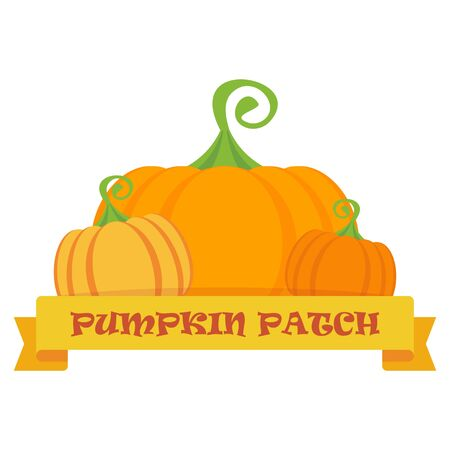 Vector pumpkin patch. Template  for postcards, flyers. Design elements for marketing, advertising, promotion, branding and media. Flat cartoon illustration. Objects isolated on a white background.