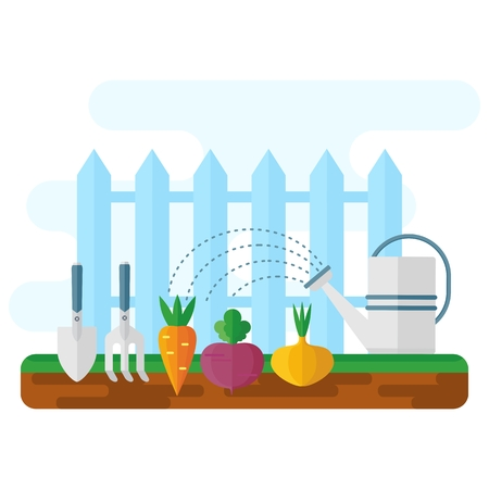 Green bed with vegetables, watering can and garden tools. Frash market sign logo. Flat vector cartoon illustration. Objects isolated on a white background.