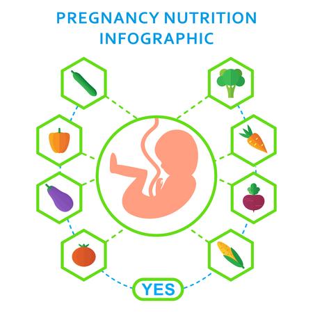 pareja comiendo: Embriones de embarazo útiles elementos vectoriales de nutrición infografía. Influencia del estilo de vida en el desarrollo saludable del feto en el útero de la mujer. Ilustración plana de dibujos animados. Objeto aislado sobre fondo blanco. Vectores
