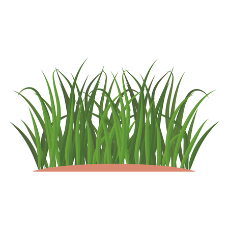Bunches of green grass on an earthen mound. Design of summer cards. Flat cartoon illustration. Objects isolated on a white background. 写真素材 - 112129443