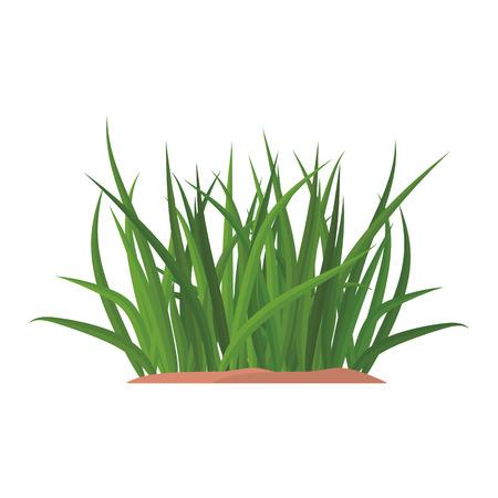 Trauben von grünem Gras auf einem irdenen Hügel. Design von Sommerkarten. Flache Karikaturillustration. Objekte isoliert auf einem weißen Hintergrund. Vektorgrafik
