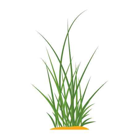 Bunches of green grass on an earthen mound. Design of summer cards. Flat cartoon illustration. Objects isolated on a white background. 写真素材 - 112129447
