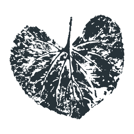 Vector Leaf print. Inkprinted leaves of the trees on paper. Traced vector image. Ilustração Vetorial