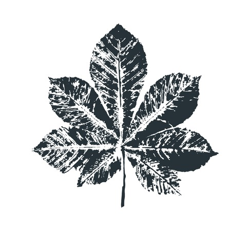 Vector black chestnut Leaf print. Inkprinted leaves of the trees on paper. Traced vector image. Illustration