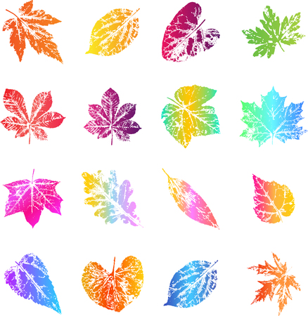 Autumn leaf prints in bright trendy gradient colors. Vector design elements for the design of postcards, promotional leaflets, autumn sales. Illustration