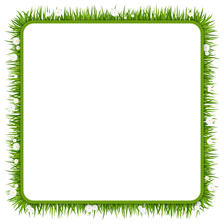 Template of Decorative frame, border of bunches of green grass with flowers on a meadow or lawn. Summer plants, chamomile inflorescence. Rustic landscape, rural farm. Flat vector illustration. Ilustração
