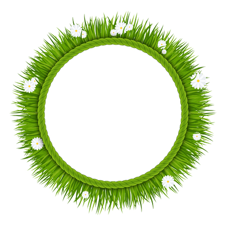 Frame with green grass with flowers on a meadow