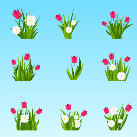 Camomiles and tulip in green grass tufts on blue sky background. Template for summer cards for birthday and holidays. Flat vector cartoon illustration.