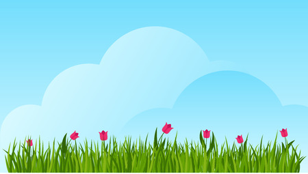 Tulip and a green grass border on blue sky background. Template for summer cards for birthday and holidays. Flat vector cartoon illustration.