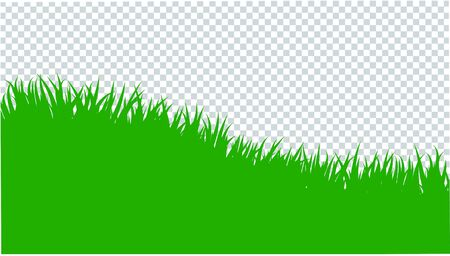 Green grass border on transparent background. Template, landscape for summer, birthday or holiday card. Eco poster. Herbal medicines, natural products, healthy food. Flat vector cartoon illustration. Stock Vector - 137600189