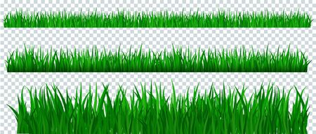 Green grass border on transparent background. Template, landscape for summer, birthday or holiday card. Eco poster. Herbal medicines, natural products, healthy food. Flat vector cartoon illustration.