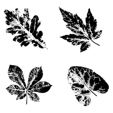 Ink print leaves. Black ink prints of leaves of trees and bushes Ilustração