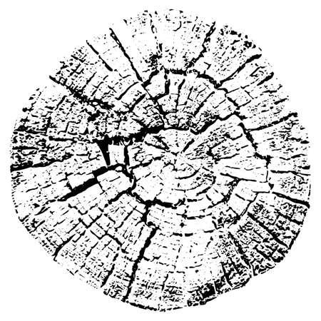 Tree growth rings. Natural cut wood. Vector illustration. Illustration