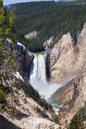 Lower Falls on Yellowstone River Wyoming USA photo
