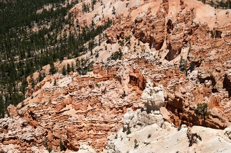 hoodoos: Hoodoos in Bryce Canyon Utah USA Stock Photo