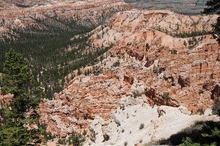 rocky mountain juniper: Hoodoos in Bryce Canyon Utah USA Stock Photo