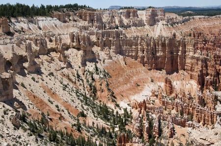 Hoodoos in Bryce Canyon Utah USA photo