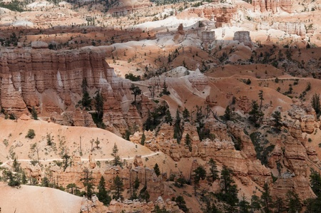 red bluff: The hoodos of Bryce Canyon Utah USA Stock Photo