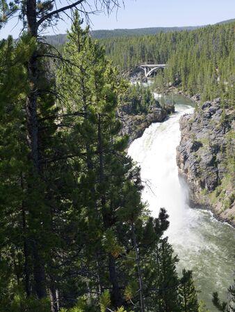 lower yellowstone falls: Lower Falls on Yellowstone River Wyoming USA