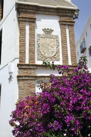Frigiliana, one of the beautiful white villages of Andalucia in Spain Stock Photo - 14543232