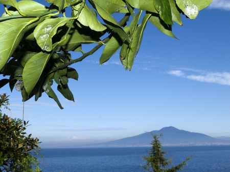 Mount Vesuvius and the Bay of Naples in Campania Italy from under a lemon tree photo