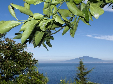marquetry: Mount Vesuvius and the Bay of Naples in Campania Italy from under a lemon tree Stock Photo