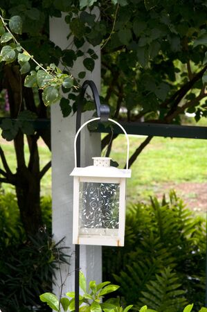 myers: Lantern in Garden in Fort MyersFlorida USA