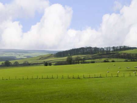 Yorkshire Dales Countryside in Northern England Stock Photo - 12546769