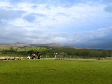 wensleydale: The Yorkshire Dales in North Yorkshire England
