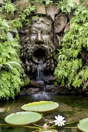 marqueteria: Impresionante jardín tropical en la isla volcánica de Ischia en la bahía de Nápoles Ital Foto de archivo