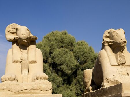 The Avenue of Rams at Ancient Temple Complex of Karnak near Luxor in the Nile Valley in Egypt