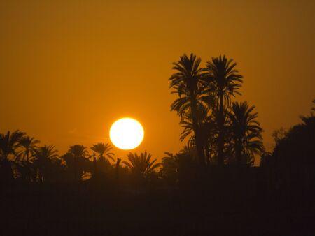 Setting Sun over River Nile on a Nile Cruise, Egypt photo