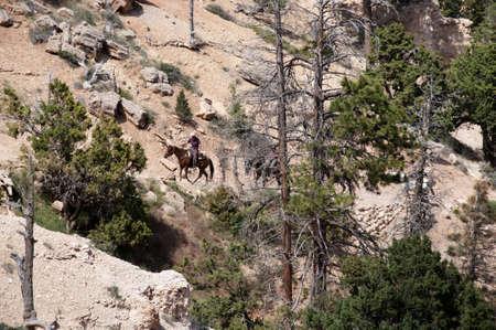 Riding in Bryce Canyon Utah USA photo
