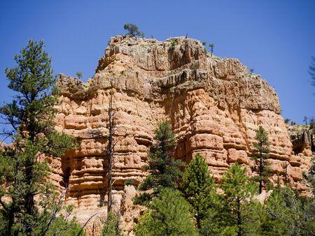 ponderosa: Salt and Pepper pot rocks in red rock Canyon near Bryce Canyon Utah Stock Photo