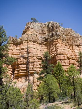 rocky mountain juniper: Salt and Pepper pot rocks in red rock Canyon near Bryce Canyon Utah Stock Photo