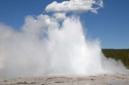 Old Faithful Geyser in Yellowstone National Park Wyoming USA photo