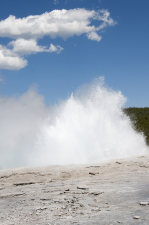 Geyser in Yellowstone National Park Wyoming USA photo