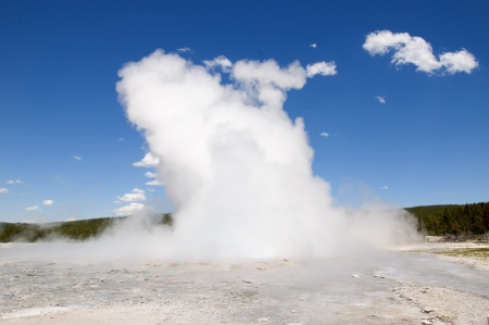Geyser in Yellowstone National Park Wyoming USA photo
