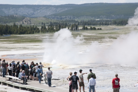 Geyser in Yellowstone National Park Wyoming USA