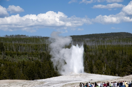 Old Faithful Geyser in Yellowstone National Park Wyoming USA