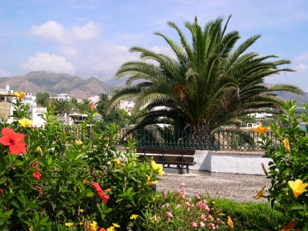 Flowers on the Balcon de Europa in Nerja, a sleepy Spanish Holiday resort on the Costa Del Sol  near Malaga, Andalucia, Spain, Europe Stock Photo - 14744665