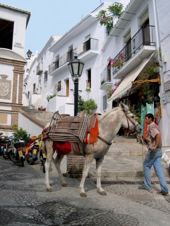 Donkey working in the narrow streets of Frigiliana one of the White Villages in Andalucia Spain