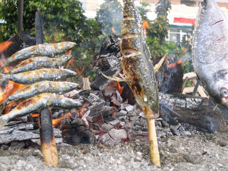 Sardines cooking on beach at Nerja Andalucia Spain     photo