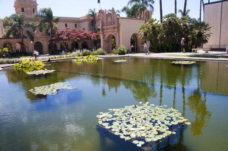 balboa: Lily Ponds in Balboa Park in San Diego California USA Editorial