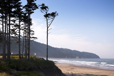 capes: Beach at Three Arch Rocks State Park on the Pacific coast of Oregon USA